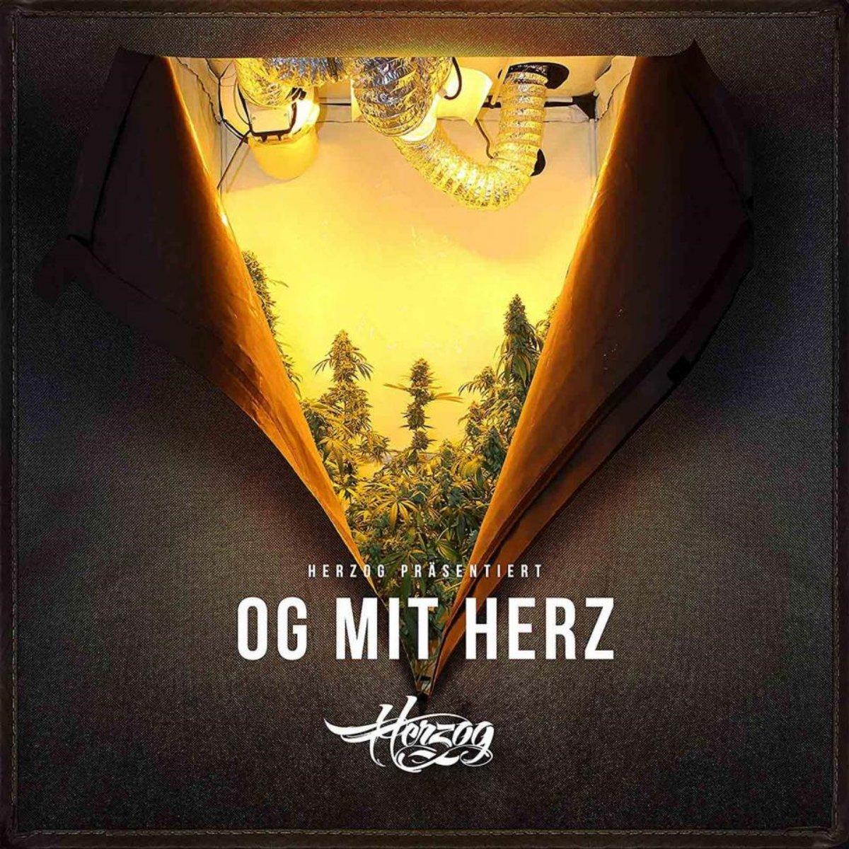 Herzog - OG mit Herz - Review
